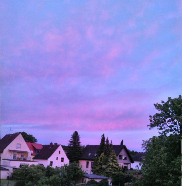 Z_HimmelJoan (1)