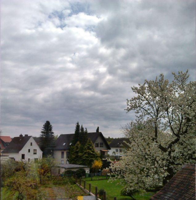 Z_HimmelJoan (1a)